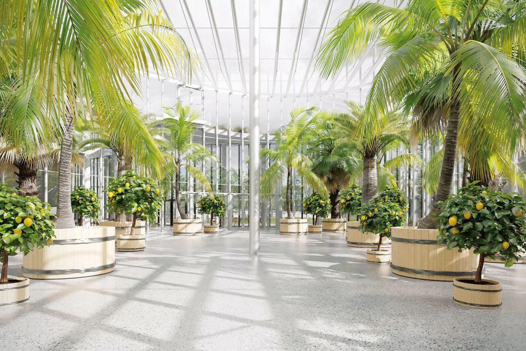 Vstupní areál botanické zahrady 5