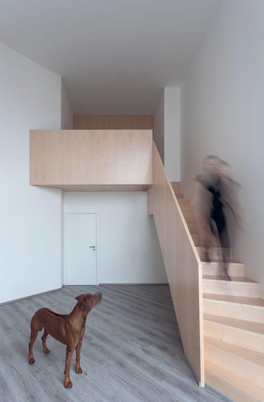 Některé z bytů mají loftové dispozice.