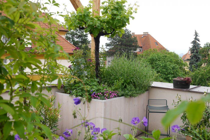 Zelená střecha na rodinném domě terasa Orionka 2