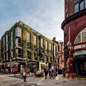 Regal House přináší do centrálního Londýna tolik potřebnou zeleň.