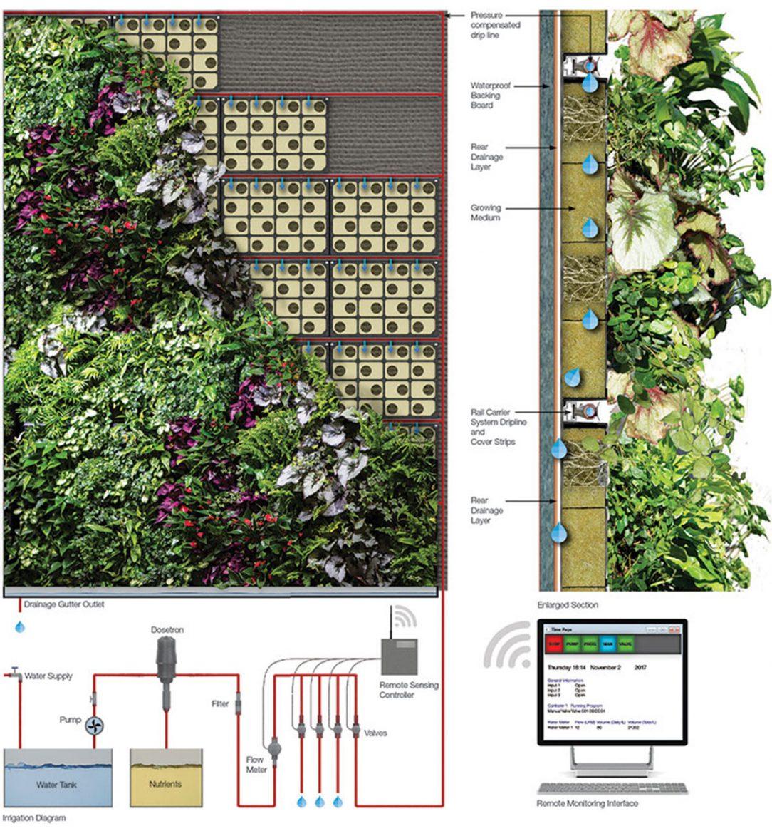 Systém zavlažování zelené stěny Regal House od firmy Biotecture.