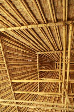 Bambus je podle odborníků ekologickým materiálem roku 2020.
