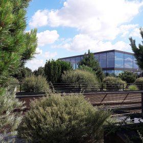 Vegetační strecha
