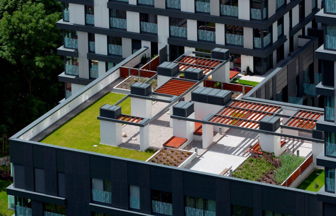 Vegetační strecha 6