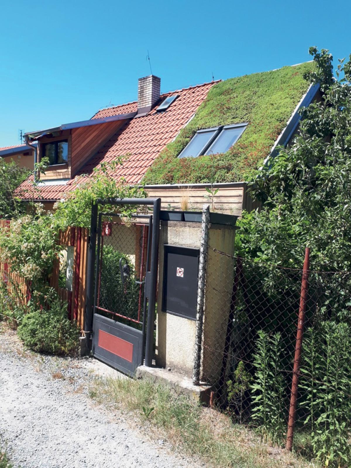 Obr. 3 Vítězná vegetační střecha roku 2019