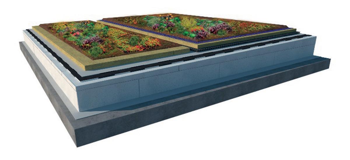 Obr. 5 Extenzivní vegetační střecha se zvýšenou hydroakumulací způsobenou hydrofilní minerální vlnou