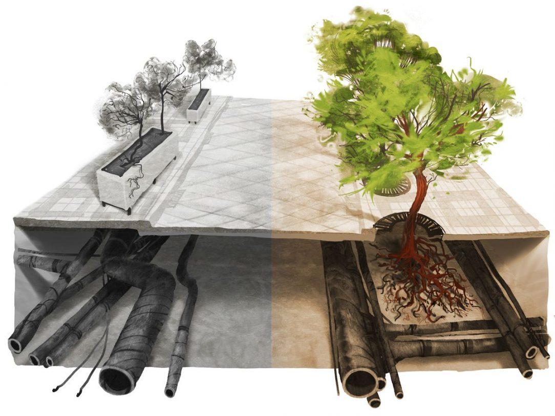 stromy ve meste 2