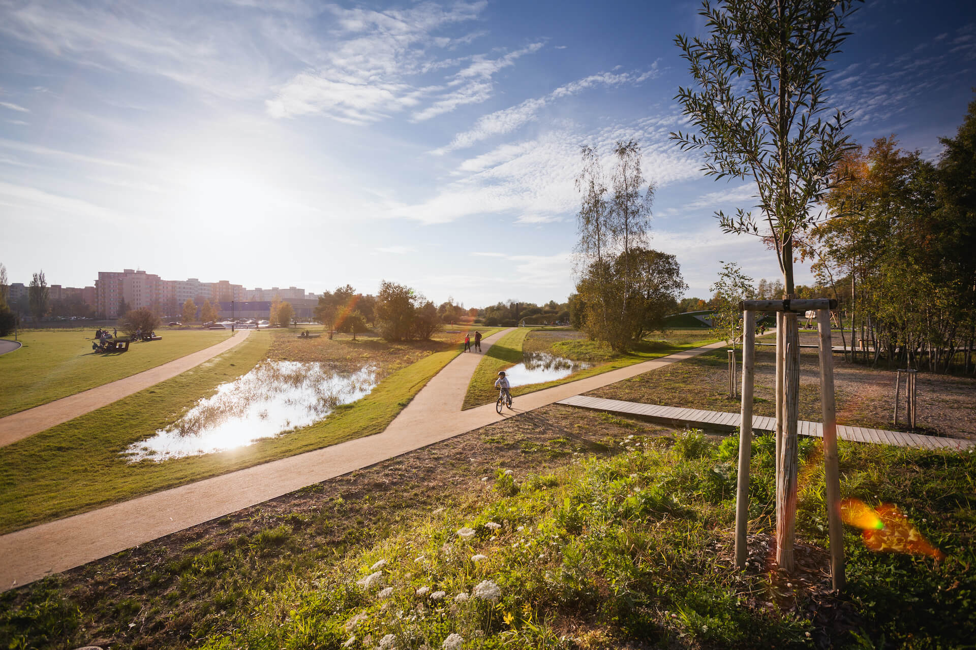PARK 4D pond by entrance 2014