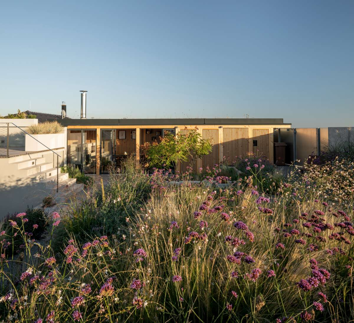 family house with atrium senaa alex shoots buildings 16 1200