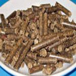 Biomasa – budoucnost vevytápění