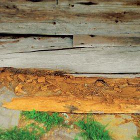 Dřevostavby a životnost – poruchy, chyby, rekonstrukce
