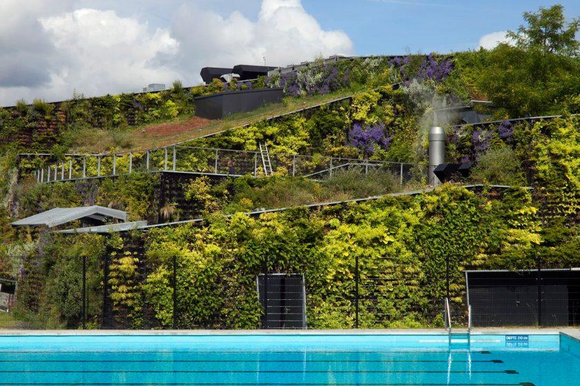 Zelené bydlení - střešní zahrady