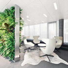 Vertikální záhrady v kanceláři