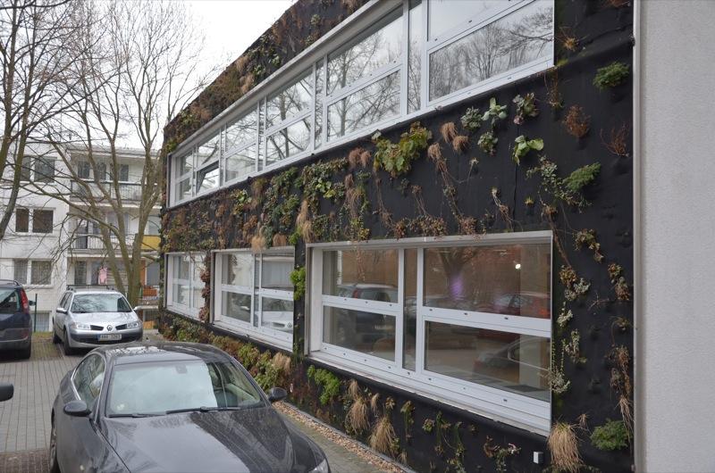Pěstování rostlin na stěně a nové technologie
