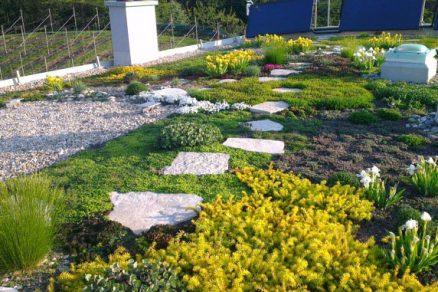 Zelená střecha s výhledem na panorama Českého ráje
