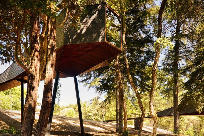 Tree Snake House - hadí dům proplétající se přírodou