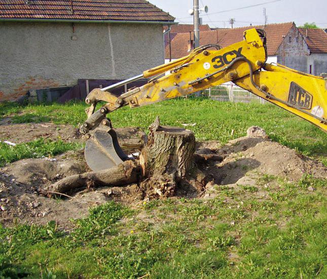 Nejrychleji se prodávají pozemky v Jihomoravském kraji