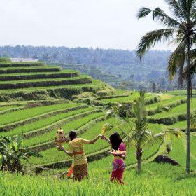 Ostrov Bali: Moderně tradiční architektura