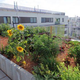 Nové řešení pro vegetační střechy