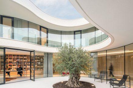 Casa Kwantes v Rotterdamu je vila objímající olivovník