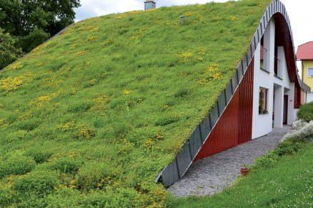 Zelené střechy: šance pro budoucnost