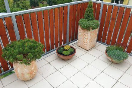 Rekonstrukce teras bytového domu