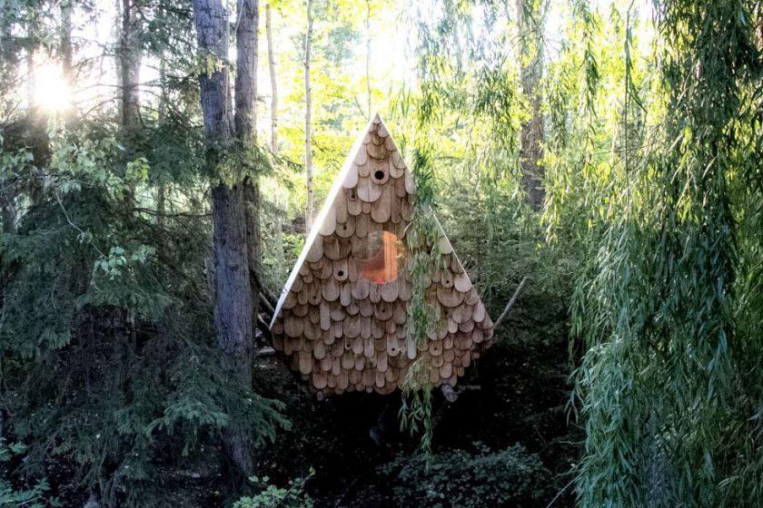 Birdhut – společné hnízdečko pro ptáky i lidi