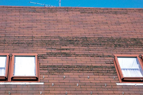 Poruchy střech z asfaltových šindelů