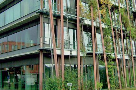 Zelené fasády a střechy