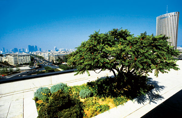 Zelené střechy jako revitalizace města