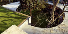 Zelené střechy mají vnovém tisíciletí zelenou