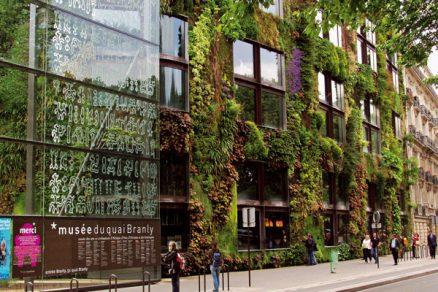 Zelené tapisérie města
