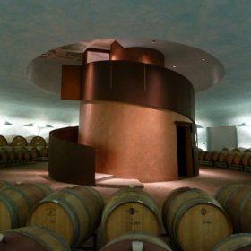 Želví krunýř na italské vinici